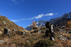 Lötschental (bulbocode909) Tags: valais suisse lötschental montagnes nature automne arbres mélèzes paysages nuages troncs bleu vert rochers
