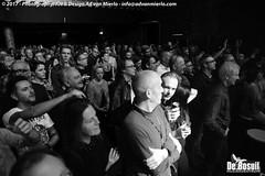 2017 Bosuil-Het publiek tijdens het optreden van Popa Chubby 18-ZW