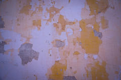 Entropy still kicking it ⏳ Abstract Backgrounds Textured  Rough Paint Yellow Wall Built Structure Architecture Decay Decaying Beauty Of Decay Decomposing Arrow Of Time Mur Nature Art On The Wall Minimalist Shootermag Minimalism Shat (Achwaq Khalid) Tags: entropy abstract backgrounds textured rough paint yellow wall builtstructure architecture decay decaying beautyofdecay decomposing arrowoftime mur natureart onthewall minimalist shootermag minimalism shattered chainreaction minimalistic minimal