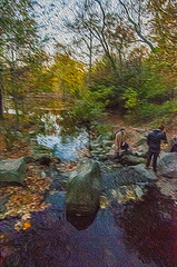 1338__0635FLOP (davidben33) Tags: brooklyn 718 ny quotnew yorkquot quotprospect parkquot autumn 2017 fall trees bushes leaves lake pets gooses ducks water sky clouds colors yellow green blue people quotstreet photosquot