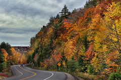 Winding Autumn Road (lfeng1014) Tags: windingautumnroad autumncolours autumnleaves fallcolours autumn fallenleaves autumnroad algonquinpark algonquinprovincialpark algonquin highway60 ontario canada landscape canon5dmarkiii lifeng ef70200mmf28lisiiusm