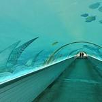 Passage souterrain de la plage, Cannes La Bocca thumbnail