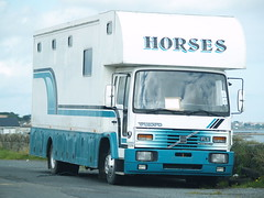 Volvo FL6 Horsebox (divnic) Tags: northernireland ni ireland millisle countydown beach irishsea sea seaside sand ballymacruise ardspeninsula northdown horsebox volvo volvotruck volvofl volvofl6 volvohorsebox volvofl6horsebox truck boxvan rigid rigidtruck