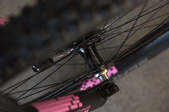 0018untitled-9067.jpg (peterthomsen) Tags: caletticycles coveypotter mtb