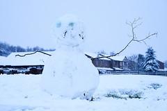 Snowman, Turnberry Estate, Bloxwich 10/12/2017 (Gary S. Crutchley) Tags: snow winter blizzard bloxwich blakenall uk great britain england united kingdom urban town townscape walsall walsallflickr walsallweb black country blackcountry staffordshire staffs west midlands westmidlands nikon d800 raw