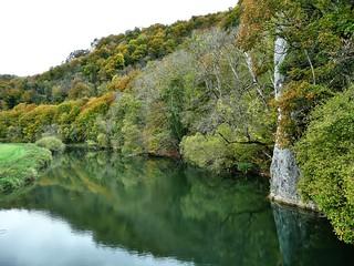 Junge Donau