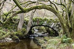 Crook Gill Packhorse Bridge, Cray, North Yorkshire (Kingsley_Allison) Tags: crookgill packhorse packhorsebridge pannier route river northyorkshire nikon nikond7200 d7200 bridge cray nationaltrust yorkshiredales