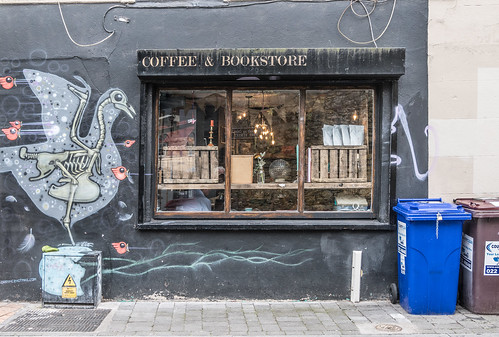 EXAMPLES OF STREET ART IN CORK CITY [PHOTOGRAPHED 2017]-133912