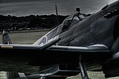 Seafire (Steve.T.) Tags: seafire fleetairarm duxford iwmduxford iconicaircraft cannon cockpit avgeek avporn aviation aircraft aeroplane militaryaviation navalaviation navy nikon d7200 aviationphotography