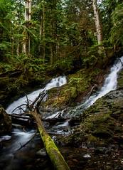 Last weekends hang out spot (plottsdaniel) Tags: weekend mountains river creek woods longexposure nikkor nikon mountbakersnoqualmienationalforest seattle pnw waterfalls waterfall