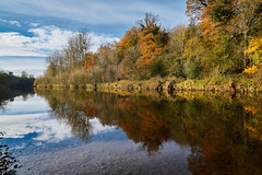 Ribble Reflected (scottprice16) Tags: england lancashire clitheroe ribblevalley riverribble river water reflections landscape scenery view brungerleybridge calm serenity colour trees leaves fall autumn november sky blue cloud jetstream weather change orange green stones sony sonya6000 zeiss1670mmf4