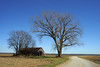 A Passing Reverie (oldoinyo) Tags: landscape scenic rural missouri autumn highway79