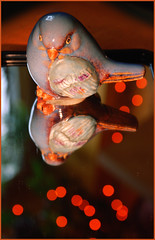 "Smile on Saturday - ""On the Mirror"" :) - DSC_2285 (FMAG) Tags: smileonsaturday onthemirror bird"