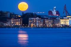 Förväntan vid fullmåne. (lmbythesea) Tags: förväntan fotosondag fs171203