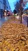 Paris en Novembre 2017 - 102 les Feuilles mortes avenue Jean-Jaurès (paspog) Tags: paris france novembre november 2017 feuillesmortes avenuesjeanjaurès deadleaves