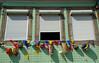 Janelas enfeitadas (ANDARILHA \\ Isabel Coimbra) Tags: sãojoãodasfontainhas bonfim porto portugal decorations festivities verão sãojoão enfeites bandeirinhas summerfestival windows janelas building tile green azulejos celebration