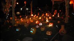 Halloween 2017_38 (Clown Guy) Tags: pumpkins pumpkinpatch jackolanterns halloween halloween2017 halloweenhouse halloweenyard halloweenyarddecor halloweenyardhaunt clowncourt homehaunt homehaunter haunter
