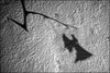 Schattenspiel fin 3 (fotokunst_kunstfoto) Tags: sw bw blackwith graffiti silhouette silhouett silhouetten schattenbilder umriss kontur konturen schattenriss