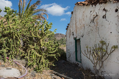 rural house in ruins (susodediego ) Tags: casa rural ruinas grancanaria canaryislands nikond750 afsnikkor1424mmf28ged susodediego contactgroups