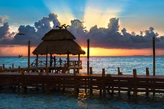 Evening Splendor (brian.pipe) Tags: nikon d500 sigma 17 50 isla mujeres mexico
