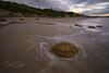 Abriendo boca en Moeraki (New Zealand) (GorkaZarate) Tags: new zealand nueva zelanda moeraki boulder roca agua seda paisaje landscape honeymoon alavavision sonymage nature viaje travel feliz
