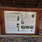 Cedars of Lebanon Interpretive Sign thumbnail