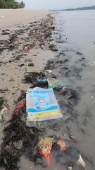 Marine litter on Changi Beach (wildsingapore) Tags: changi carpark1 threats litter trash shore singapore marine intertidal seashore marinelife nature wildlife underwater wildsingapore