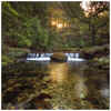 The Crossing, Tollymore Forest (Chris-Ibbotson-Photography) Tags: tollymoreforestpark foleysbridge oldbridge shimnariver newcastle mournemountains cascades steppingstones hermitage waterfalls