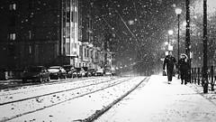 let it snow (frax[be]) Tags: streetphotography street atmosphere snow night urban city 35mm fuji xe3 romantic outdoor highcontrast monochrome noiretblanc blackwhitephotos blackandwhite bnw bw poetry people