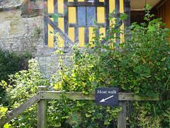 Bushes outside Stokesay Castle gatehouse (Dunnock_D) Tags: uk unitedkingdom britain england shropshire stokesay castle gatehouse moat arrow sign bush
