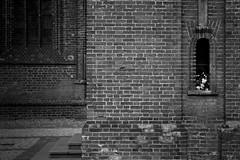 Noname (Pavel 'PAshaRome' Vavilin) Tags: blackandwhite bokeh minimalism naturamorta urban monochrome