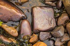 Rocks on the beach, Siglufjörður, Iceland (thorrisig) Tags: 16062017 nesdalur siglufjörður fjara grjót nærmynd steinar dorres sigurgeirsson sigurgeirssonþorfinnur siglufjord siglufjordur tröllaskagi norðurland northoficeland north thorrisig thorfinnursigurgeirsson þorrisig thorri thorfinnur þorfinnur þorri þorfinnursigurgeirsson ic iceland ísland island