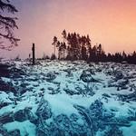 Winter landscape. thumbnail