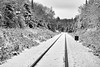 8 mile (twurdemann) Tags: 03ndsoftgrad 8mile algomacentralrailway blackandwhite canadiannationalrailway clouds cold fifthline frost fujixt1 gnd1s hoarfrost landscape leeseven5 mile8 nature niksilverefex northernontario ontario railroad railway saultstemarie sky snow storm train traintracks trees winter xf1855mm