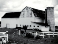 Will You Remember Me~ (K.Chris ~AlwaYs LeaRning~) Tags: barn shed farm bw monochrome blackandwhite rural countryroad