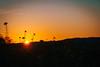 Sun goes Down (Elowi) Tags: nature natur sun sonne fields field felder himmel sky colors farben sundown sonnenuntergang sunset sharpness schärfe kontrast contrast fokus focus plants pflanzen landscape landschaft sony sonyalpha alpha6000 alpha selp18105g