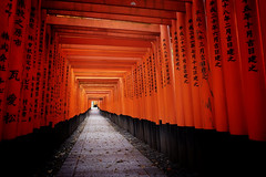Fushimi Inari Taisha XLIX (Douguerreotype) Tags: shrine temple kyoto gate torii red japan