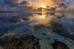 Sunrise over the lagoon (Mickspixx) Tags: ladyelliotisland reef greatbarrierreef lagoon sea