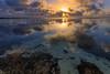 Sunrise over the lagoon (Mickspixx) Tags: ladyelliotisland reef greatbarrierreef lagoon sea