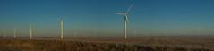 Harvesting the wind (famasonjr) Tags: wind turbine generator canoneos7d canonef28135mmf3556isusm usa indianna west lafayette landscape sun sunrise panorama