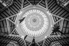 Christmas Stars (McQuaide Photography) Tags: valencia spain europe sony a7rii ilce7rm2 alpha mirrorless 1635mm sonyzeiss zeiss variotessar fullframe mcquaidephotography adobe photoshop lightroom availablelight handheld interior indoors city urban architecture building wideangle wideanglelens history historical perspective blackandwhite bw blackwhite mono monochrome mercadocentral mercatcentral centralmarket dome crossing iron glass roof ceiling oldtown shape form geometry circle