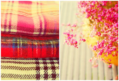 Find beauty in the simple things (mintukka) Tags: autumn fall dippy diptych calluna scarf scarves plaidscarf plaids clothes stilllife pink autumnscarf colors soft heather