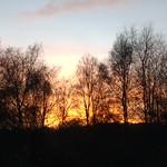Hersey Reserve at dusk. thumbnail