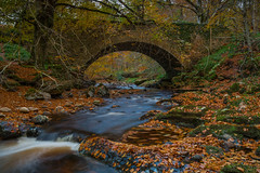 Cawdor Woods. (Gordie Broon.) Tags: cawdor woodland burn landscape bridge river autumn trees leaves scottishhighlands scotland schottland rio stream colours ecosse november 2017 forest walk escocia paysage fiume alltdearg clephanton piperhill iinchyettie achindown szkocja paisaje nairn inverness nairnshire northeastscotland caledonia scenery scozia scenic alba abhainn landschaft sonya7rmkii sonyzeiss1635f4lens boulders le flod flow gordiebroonphotography geotagged