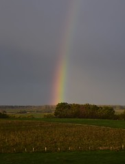Regenbogen am Morgen; Bergenhusen, Stapelholm (Chironius) Tags: stapelholm bergenhusen schleswigholstein deutschland germany allemagne alemania germania германия niemcy himmel sky ciel cielo hemel небо gökyüzü morgendämmerung sonnenaufgang morgengrauen утро morgen morning dawn sunrise matin aube mattina alba ochtend dageraad рассвет amanecer morgens licht
