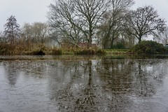 DSC06123 (hofsteej) Tags: holland middendelfland zuidholland netherlands december vlaardingervaart broekpolder natuurmonumenten