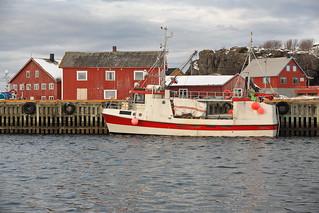 Fishing boat painted white-red moored in the port. Laukvik-Vagan kommune-Austvagoya-Lofoten-Norway.0625