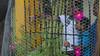 Sabana Toro. San Cristóbal. Isabel y Ramón (PresidenciaRD) Tags: presidentedanilomedina presidenciarepúblicadominicana noviembrede2017 ysabelflorentinoyramónmesa fundaciónliterariaaníbalmontaño sancristóbal proyectosculturalesdelosbarrios somosdebarrio sabanatoro