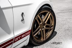 SHLEBY GT500 VELGEN WHEELS SPLIT5 (VelgenWheels) Tags: gt500 shelby split5 mustang s197 s197mustang mustangweek mustangs velgen velgenwheels velgensociety velgenwheel velgn felgen bing google wheels wheelporn wheelfitment miami wheelcompany muscle supercharged eibach sportlines nitto invo