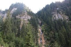 IMG_0721 (tecumseh1967) Tags: 2016 borsa nationalpark rodnagebirge rotel rumänien wanderung wasserfall wasserfallderpferde rollendehotel